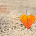 redenen om van herfst te houden mama blog