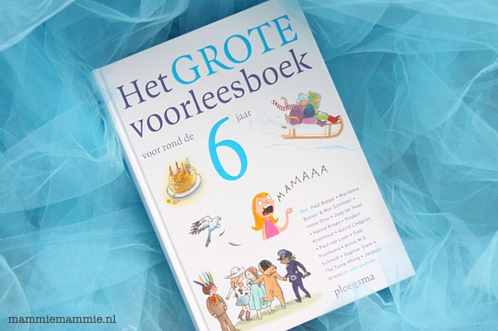 voorleesboek kind zes jaar