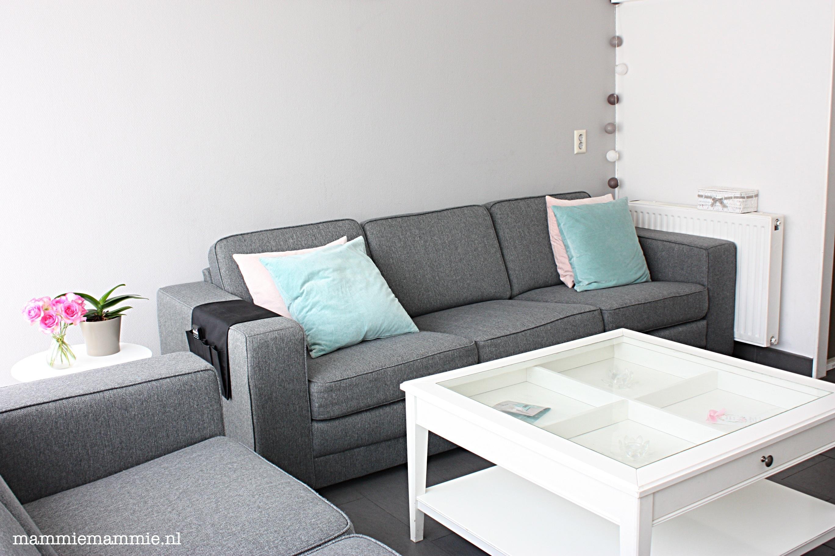 Moderne grijze bank for Landelijke woonkamer tips
