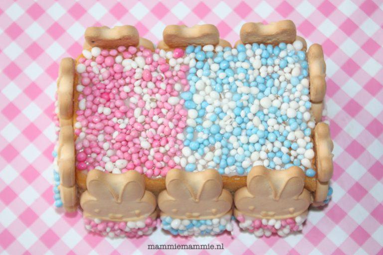 taart maken met muisjes