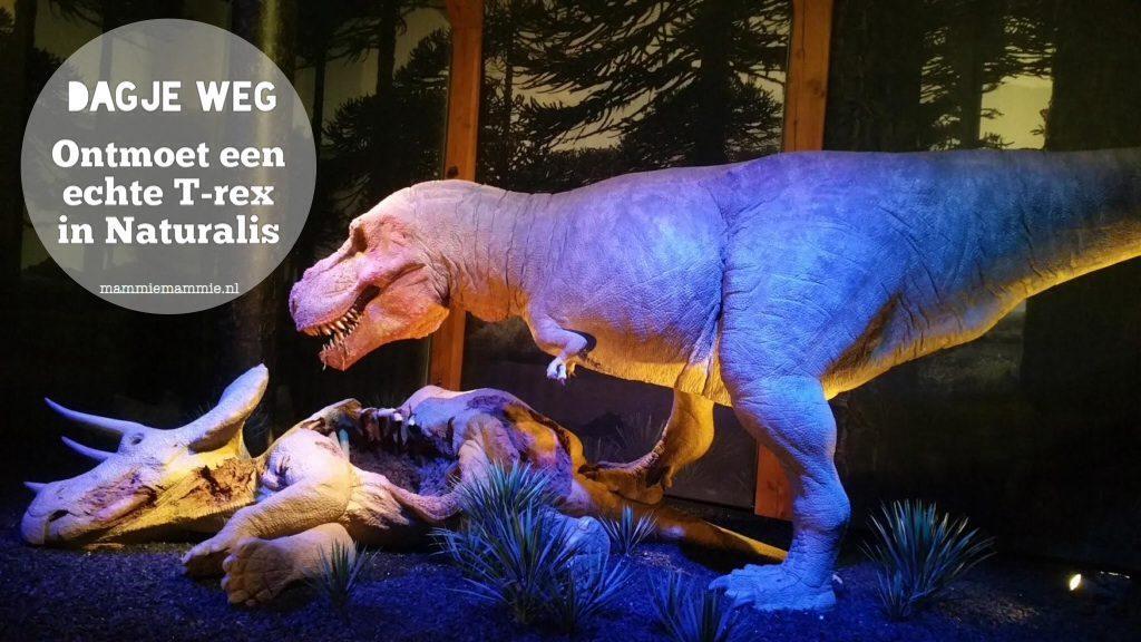 """<span class=""""entry-title-primary"""">Op stap   naar Naturalis voor de echte T-Rex Trix</span> <span class=""""entry-subtitle"""">in samenwerking opgesteld </span>"""
