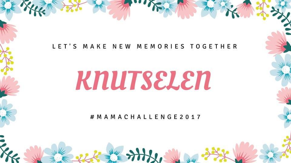 Mama Challenge | Knutselen: maak een Schelpen Souvenir Schilderij