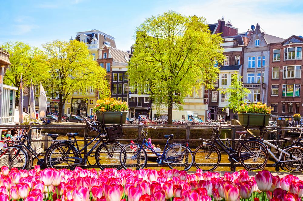 activiteiten in Amsterdam