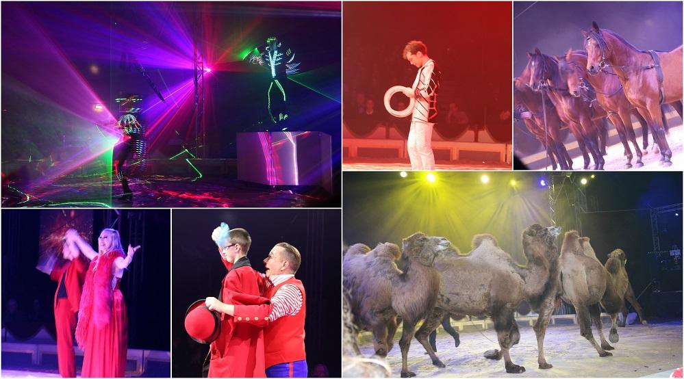 circus den haag