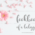 lookbook of a babygirl mama blog