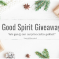 good spirit giveaway mommy blog