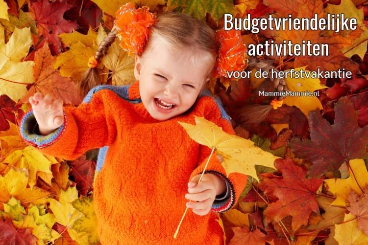budget activiteiten herfstvakantie basisschool