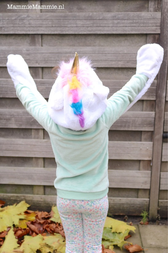 unicorn muts en wanten