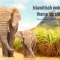 islamitisch onderwijs kleuter