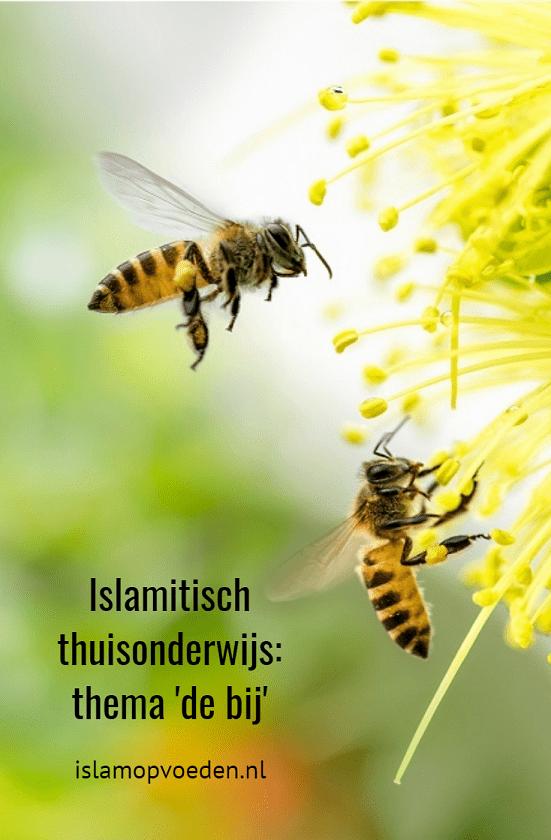 islamitisch thuisonderwijs kleuter