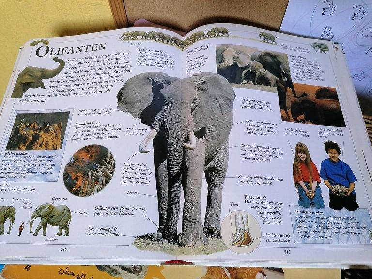 olifant encyclopedie